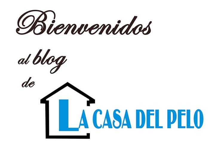 Blog La Casa Del Pelo